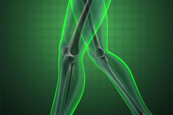 Healthy knee x-ray